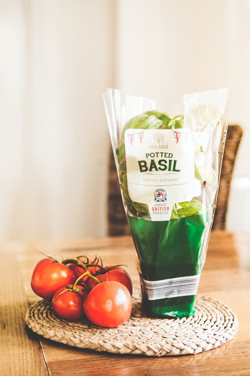 Potted Basil Plastic Pack Near Tomatoes on Place Mat