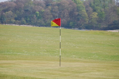 旗, 旗桿, 樹木, 紅色 的 免费素材照片
