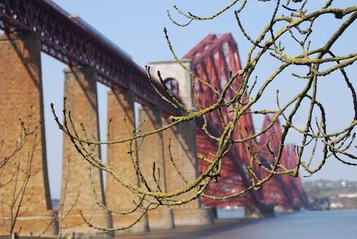 railbridge, 宏觀, 扶手, 橋 的 免费素材照片