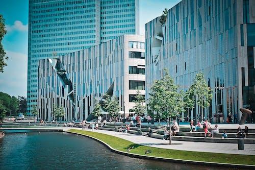 Immagine gratuita di acqua, alberi, architettura, bicchiere