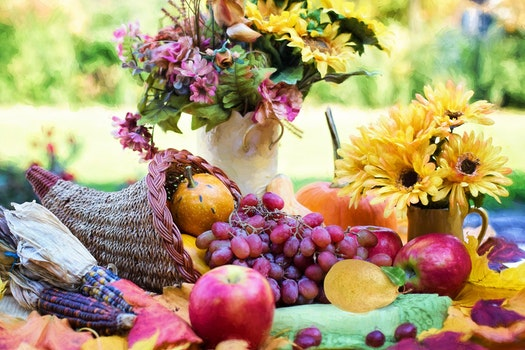 Free stock photo of holiday, apple, grapes, harvest