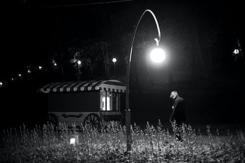 Foto profissional grátis de abajur, escuro, leve, natureza