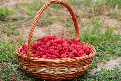 Raspberries in Basket