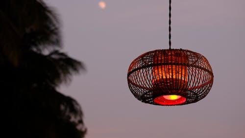 Základová fotografie zdarma na téma lampa, lehký, makro, světlý