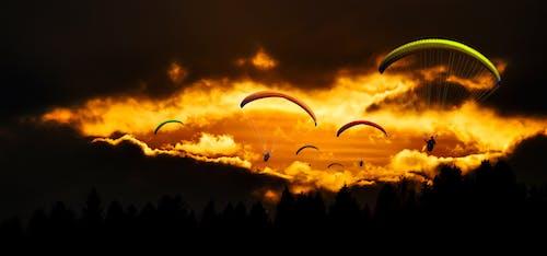 구름, 낙하산, 모험, 새벽의 무료 스톡 사진