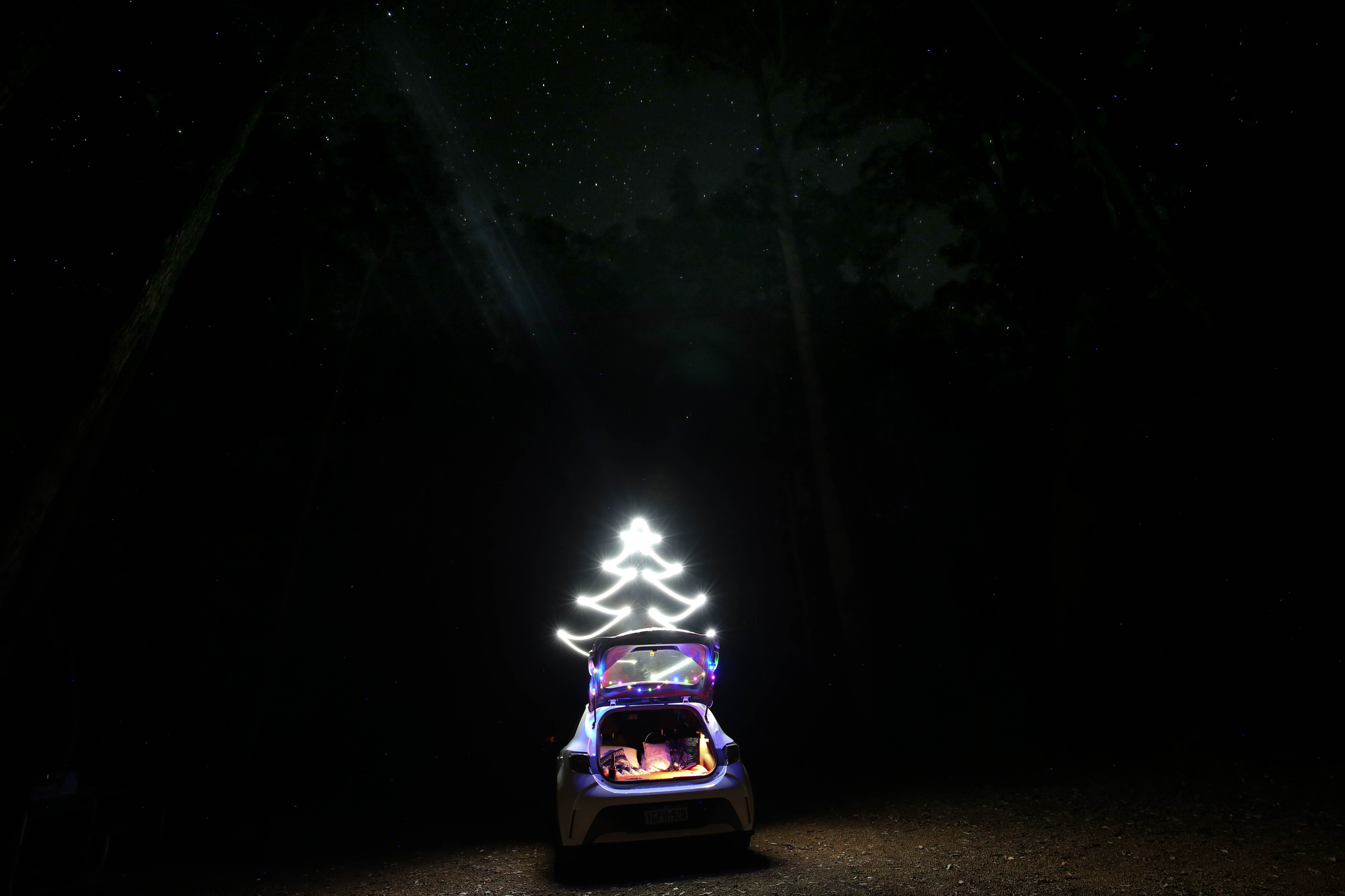 Gratis arkivbilde med camping, juletre, lang eksponering, stjerner