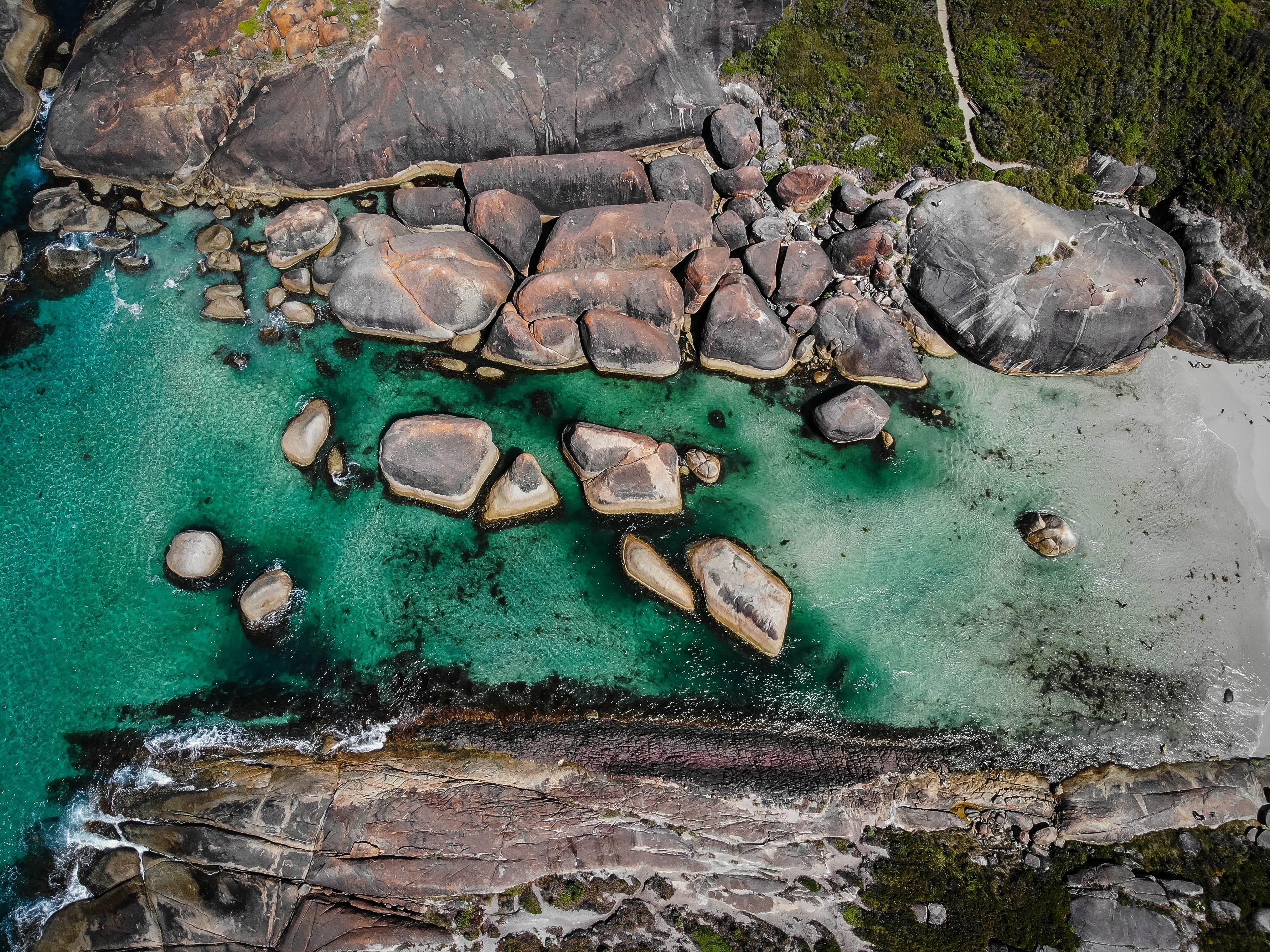 Gratis arkivbilde med australia, elefant bergarter, hav
