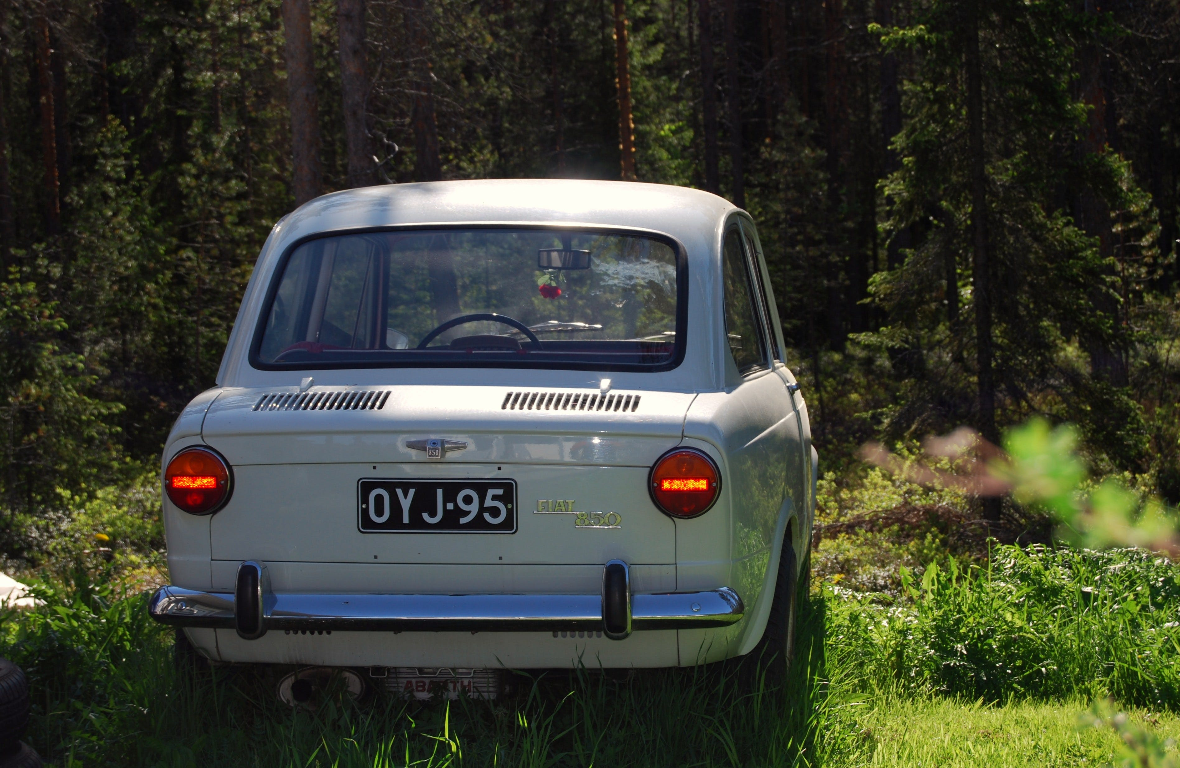 Gray Car Parked in the Forest