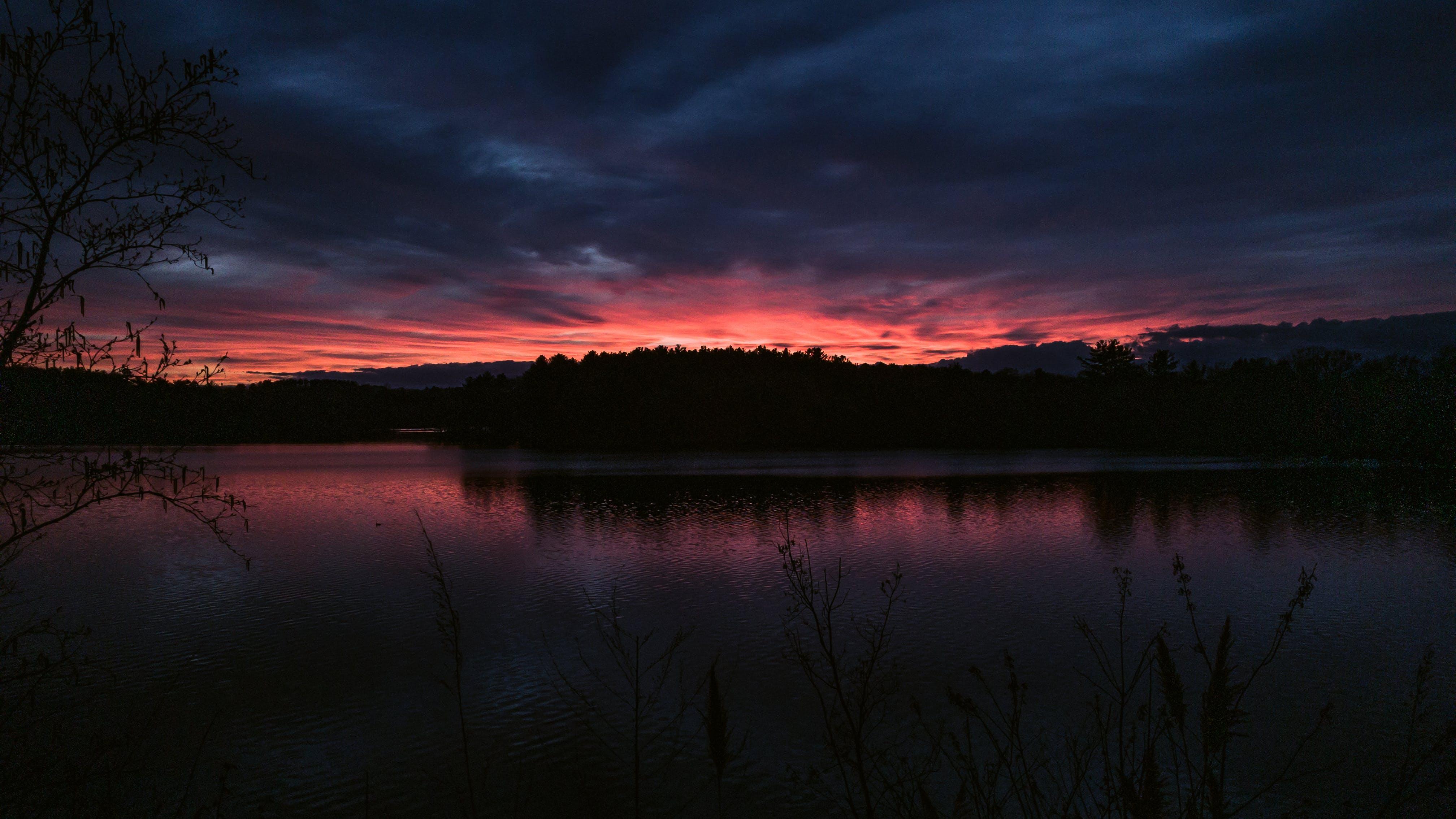 Základová fotografie zdarma na téma chladné světlo, horizont, jezero, les