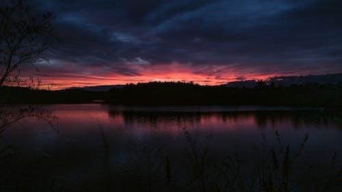 Free stock photo of cool light, forest, horizon, lake