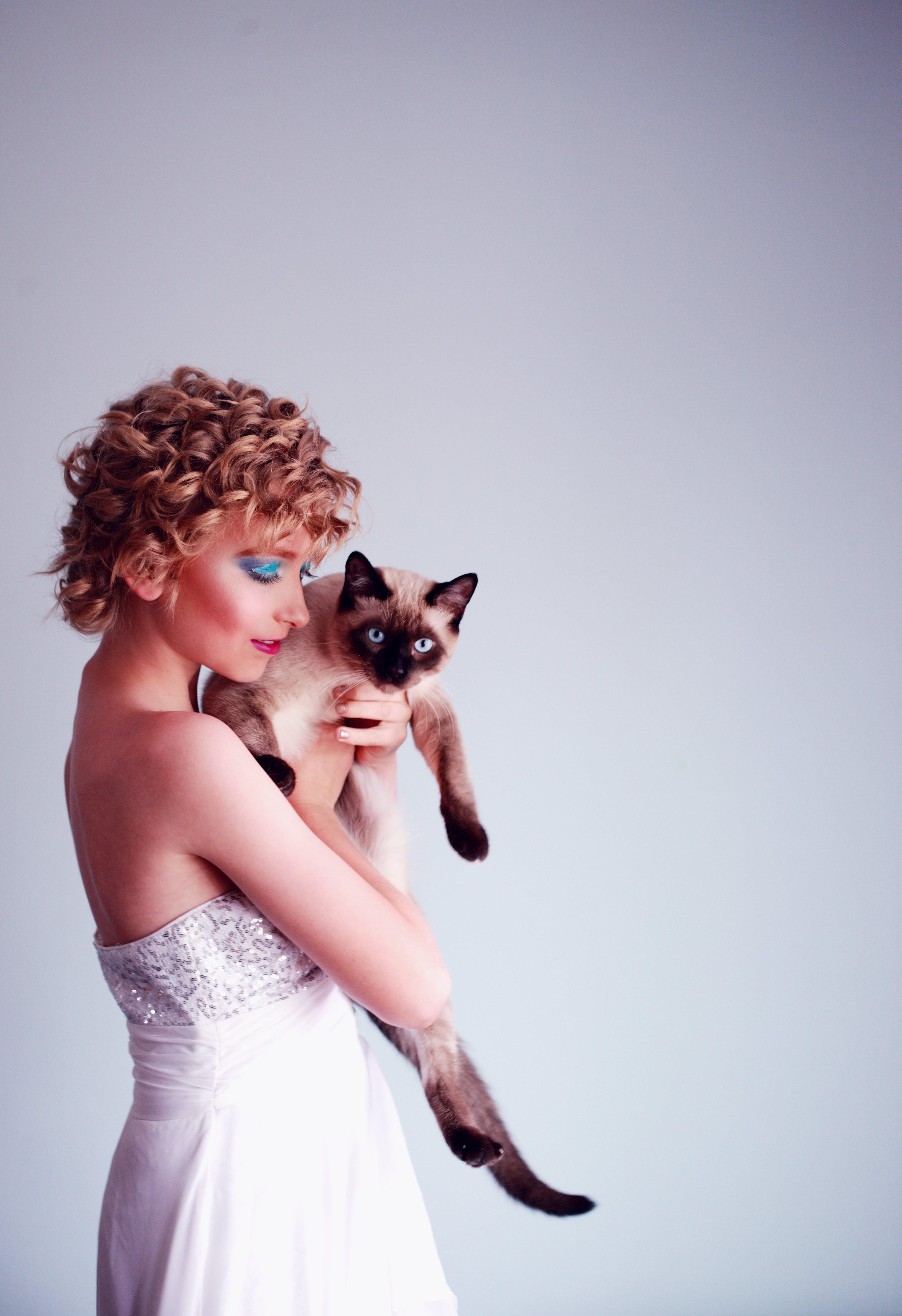 Fotobanka sbezplatnými fotkami na tému atraktívny, domáce zviera, držanie, elegantný