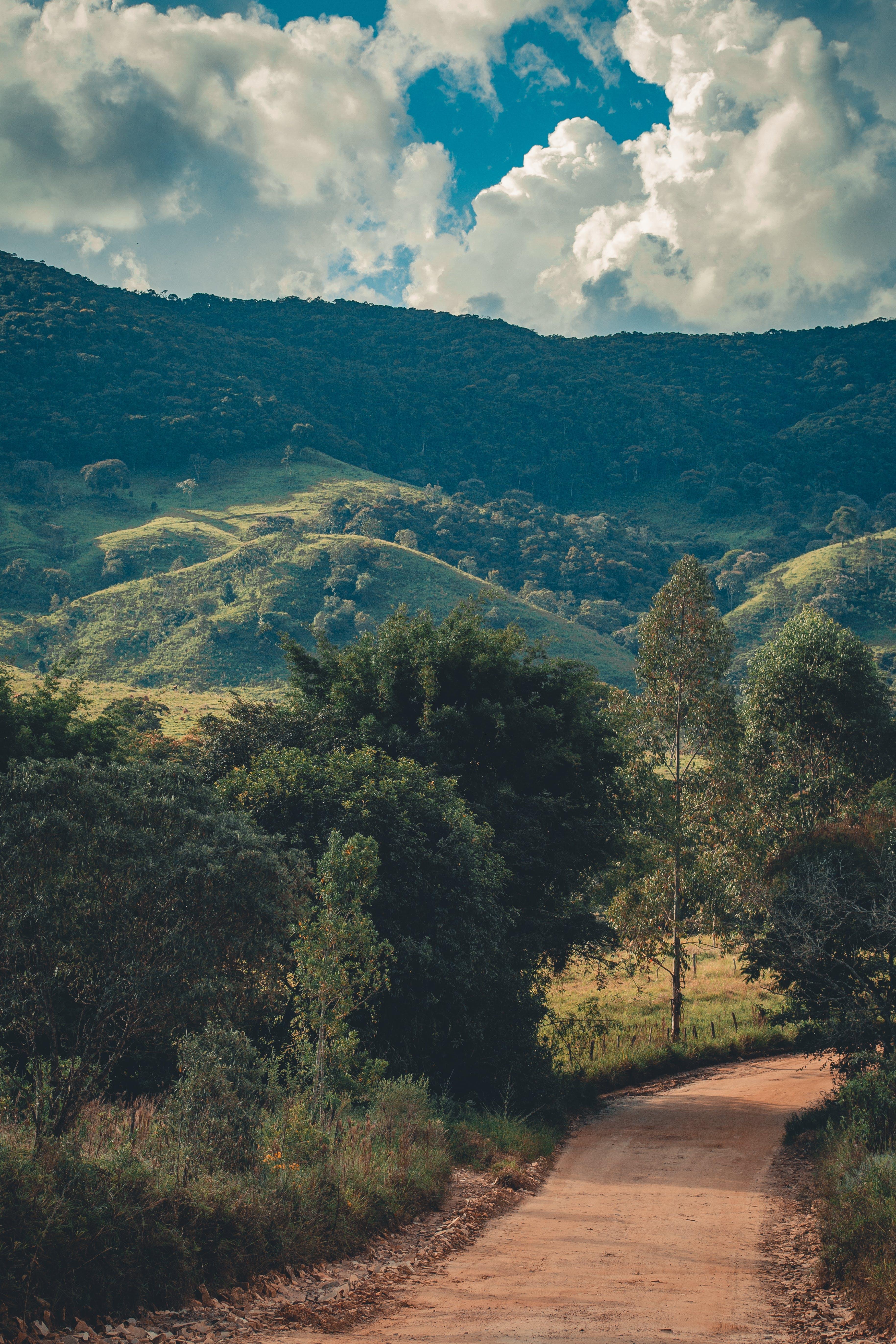 Δωρεάν στοκ φωτογραφιών με αγροτικός, βουνό, γραφικός, δέντρα