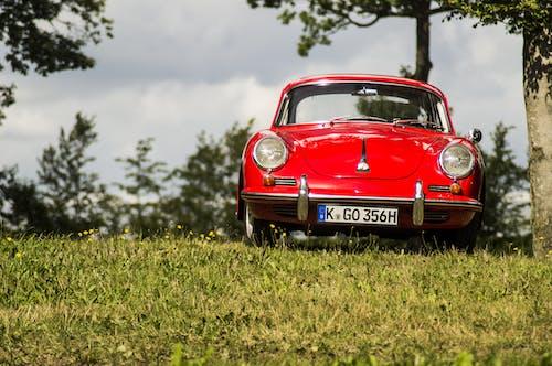 Gratis arkivbilde med bil, blomster, coupé, dagslys