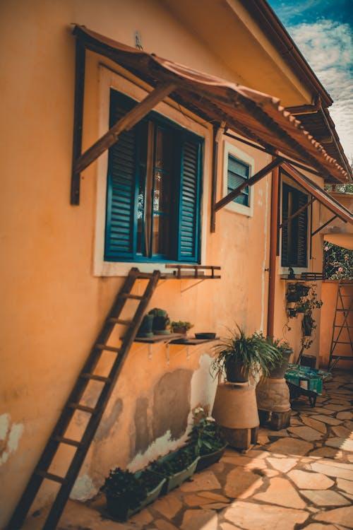 Ingyenes stockfotó ablakok, beton, cserepek, design témában