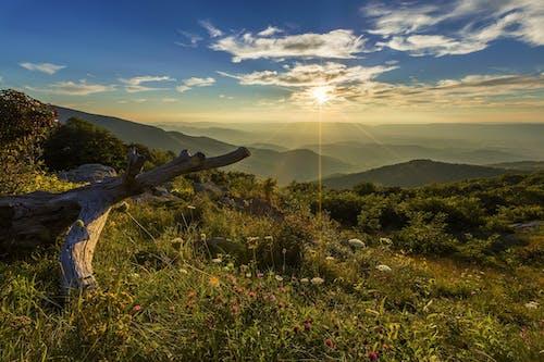 Fotos de stock gratuitas de amanecer, campo, césped, cielo