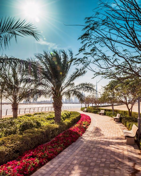 al jaddaf, ánh sáng mặt trời, bờ sông