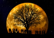 people, night, dark