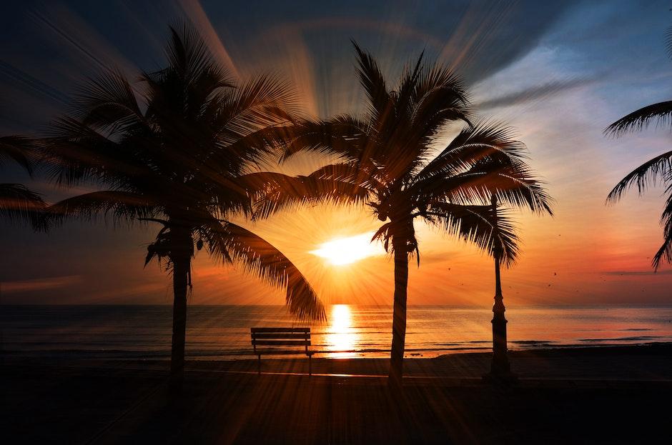 beach, beach sunset, bench