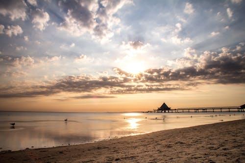 Бесплатное стоковое фото с берег, вода, восход, закат