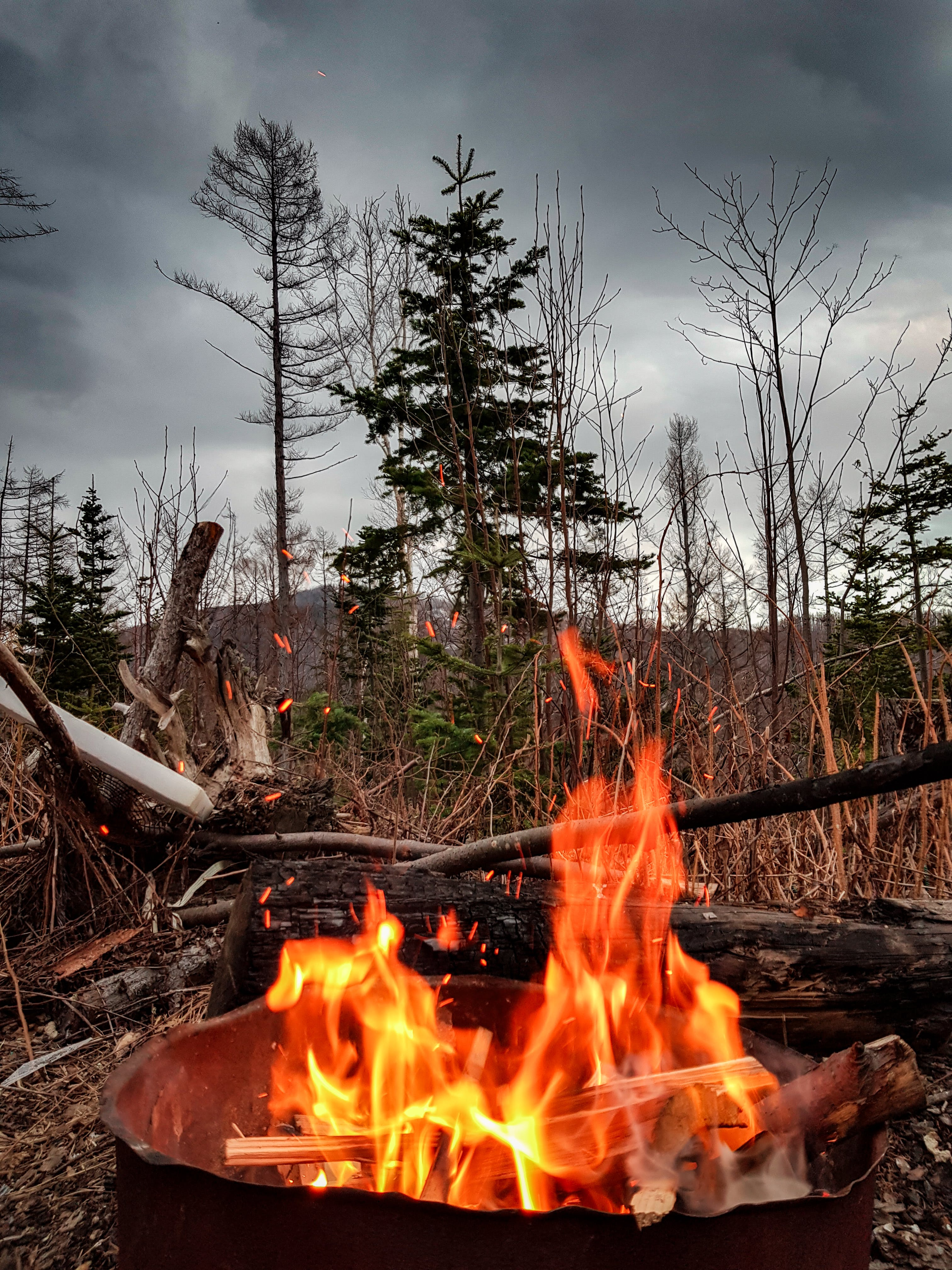 Free stock photo of android, board, bonfire, Country House