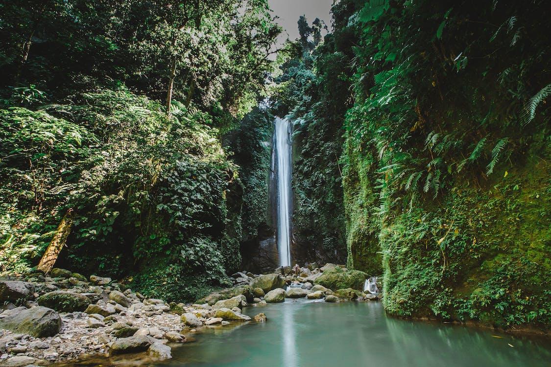 cascade, cascades, chutes d'eau