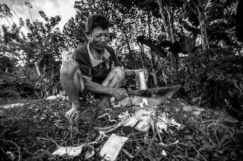Безкоштовне стокове фото на тему «азіати, документація, портретна фотографія»