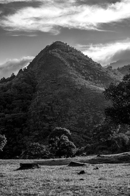 Безкоштовне стокове фото на тему «гора, краєвид»