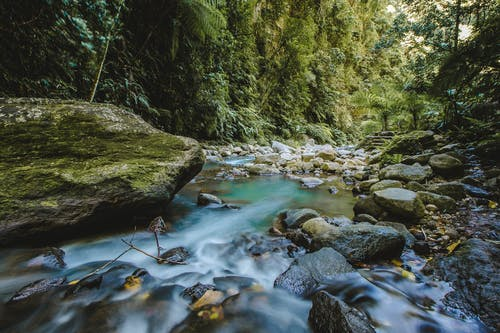 Безкоштовне стокове фото на тему «краєвид, річка»