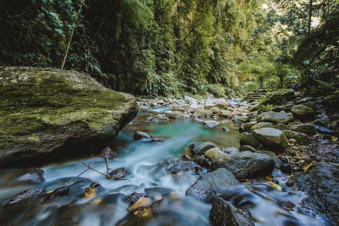 flod, landskab