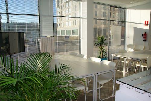 açık, ahşap, apartman, bitkiler içeren Ücretsiz stok fotoğraf