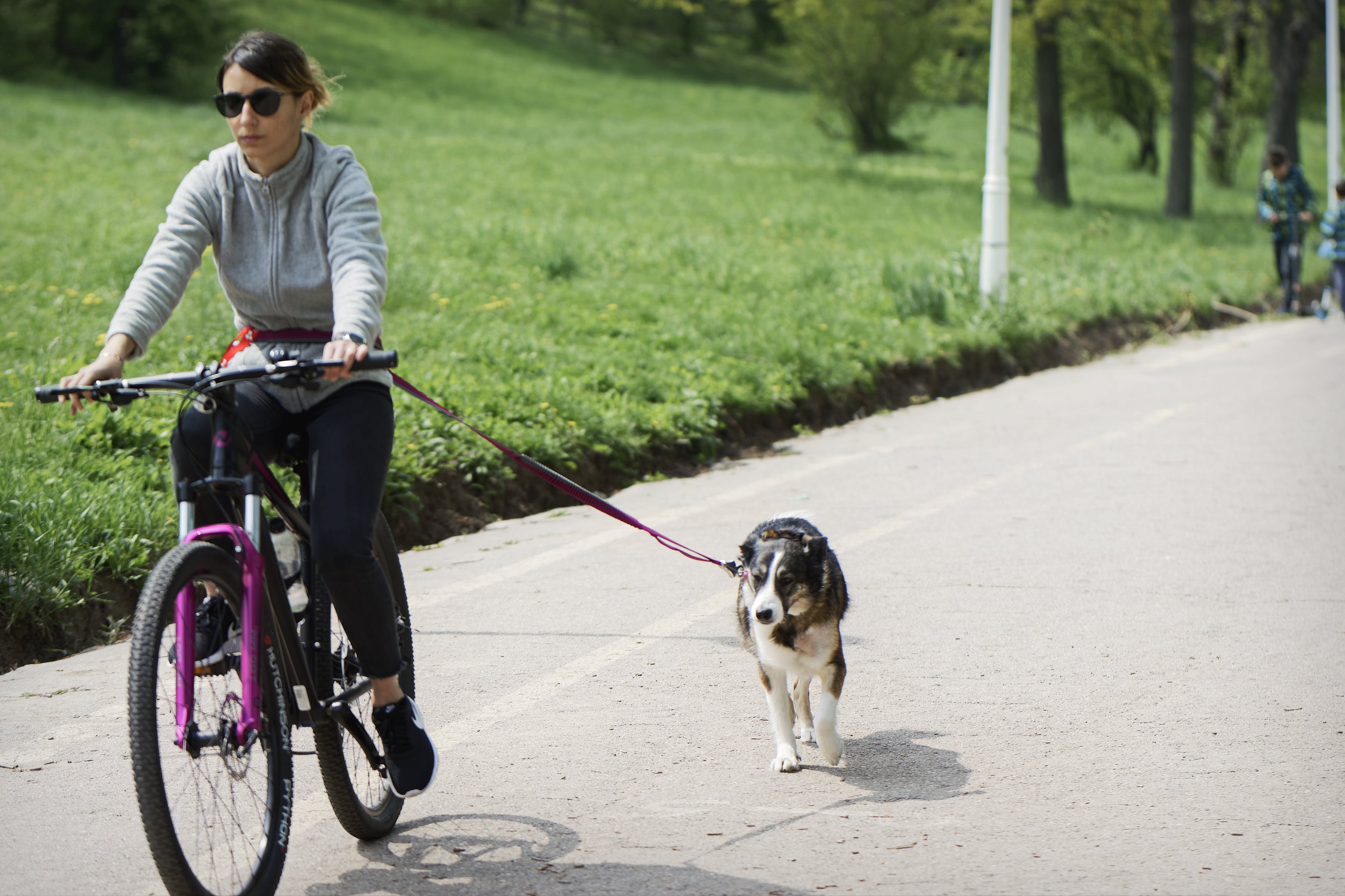 Free stock photo of bicycle, dog, girl with dog bicycling, grass