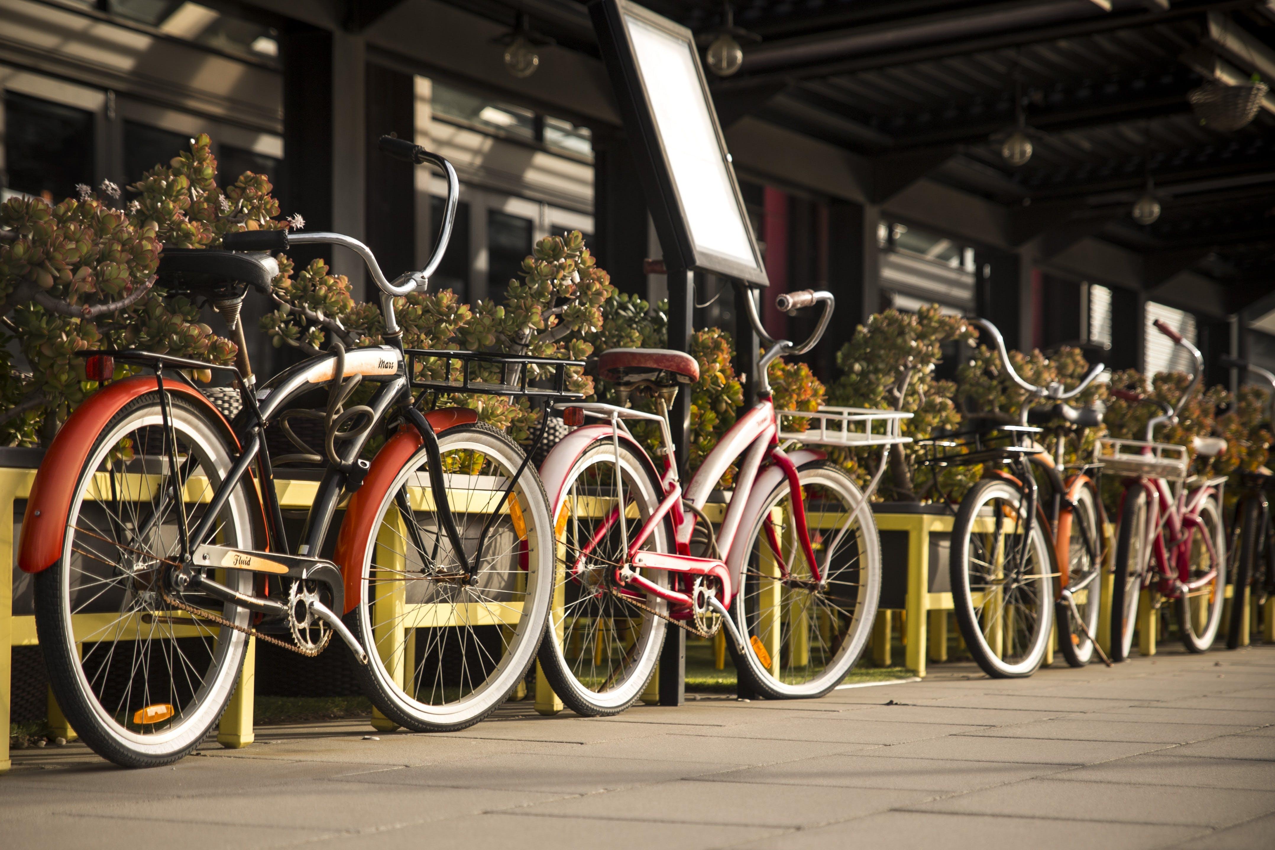 Four Beach Cruiser Bikes Parked Beside Railings