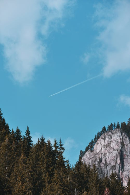 경치, 경치가 좋은, 구름, 나무의 무료 스톡 사진