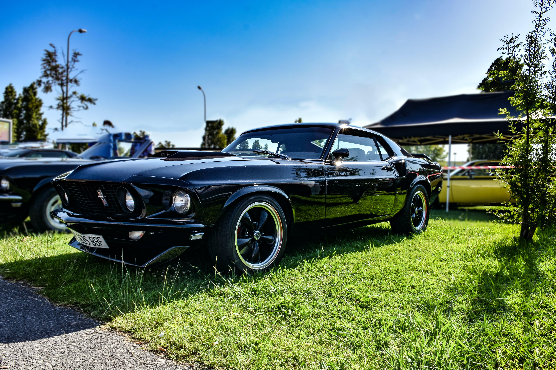 Free stock photo of black car, car, mustang