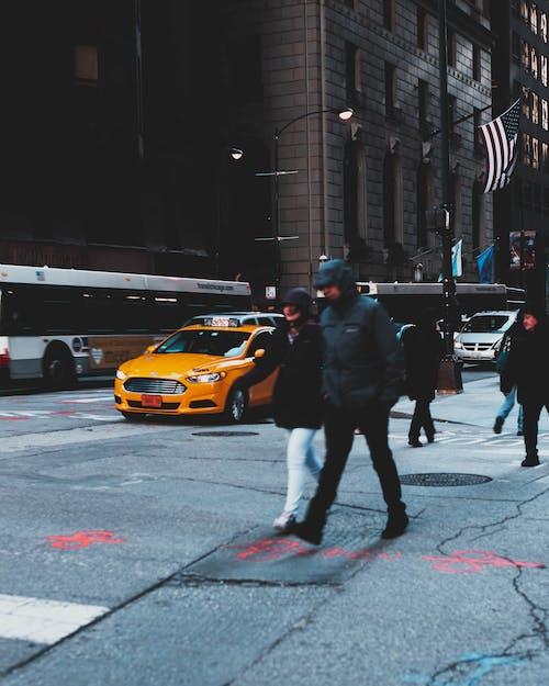 Foto stok gratis jalan, kota, lalu lintas, manusia