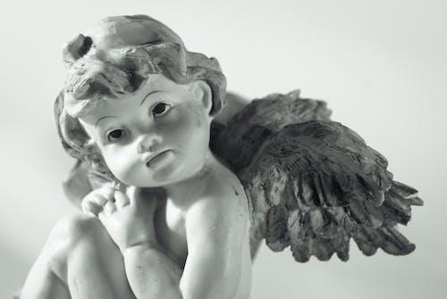 Gratis lagerfoto af baby, engel