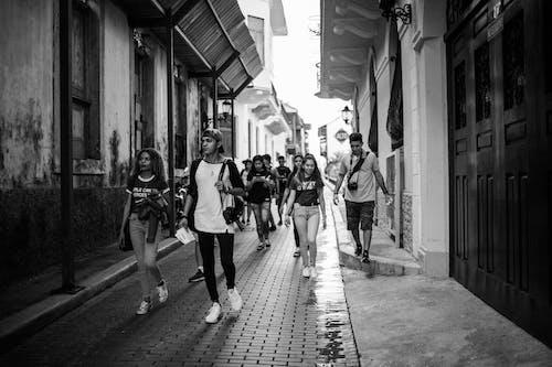Kostnadsfri bild av fotvandring, gata, gränd, grupp