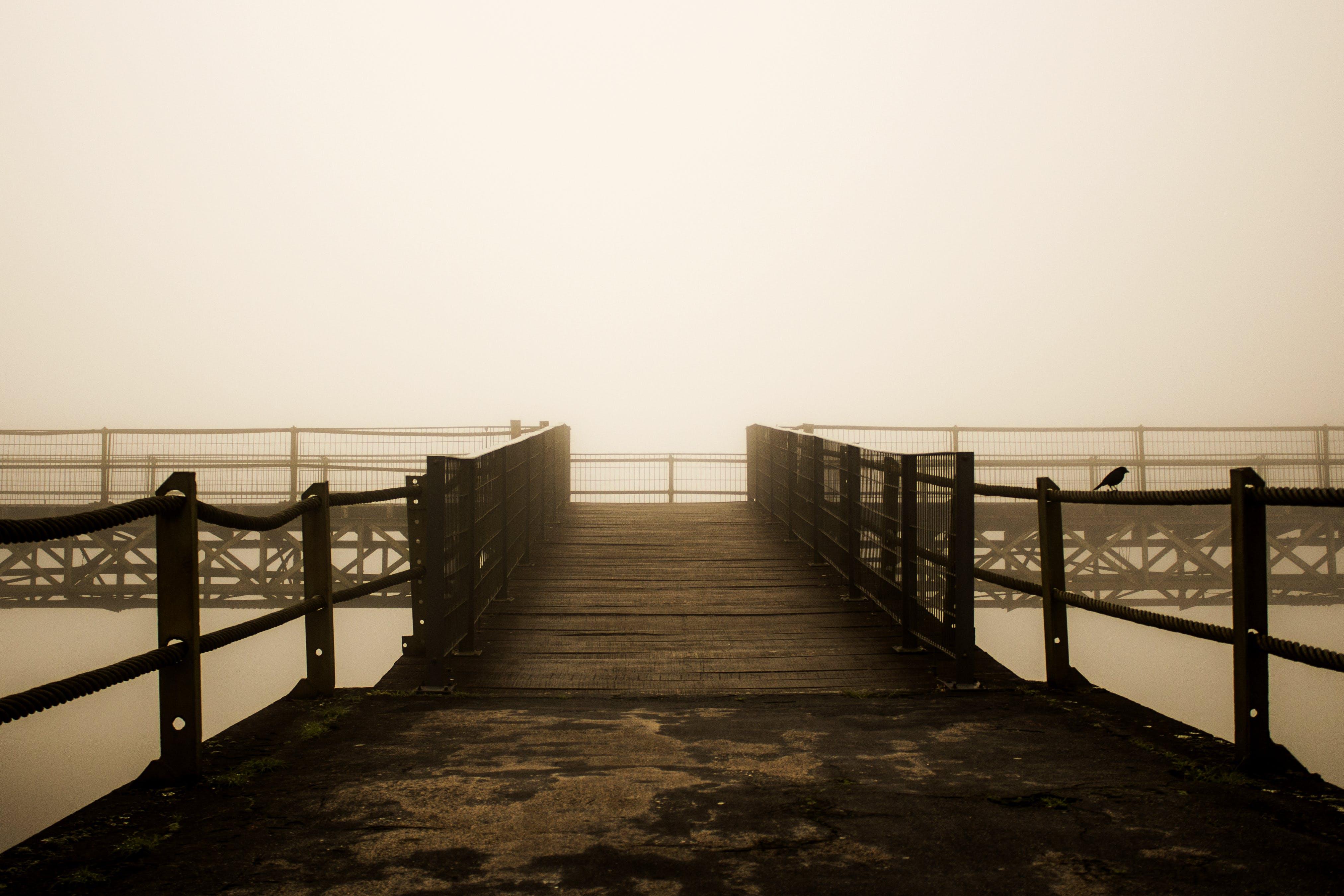 Δωρεάν στοκ φωτογραφιών με γέφυρα, λήψη φωτογραφίας, τοπίο, φωτογραφία