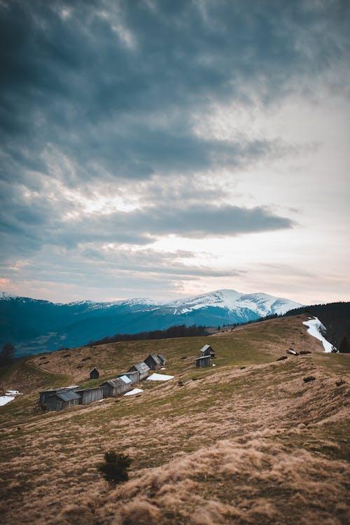 Fotos de stock gratuitas de al aire libre, caminar, cerros, césped