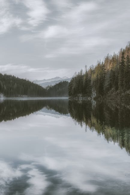 Photo of tranquil lake surrounded by trees