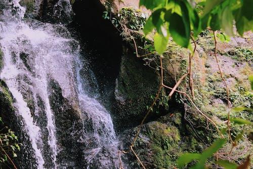 Immagine gratuita di acqua, ambiente, autunno, cascate