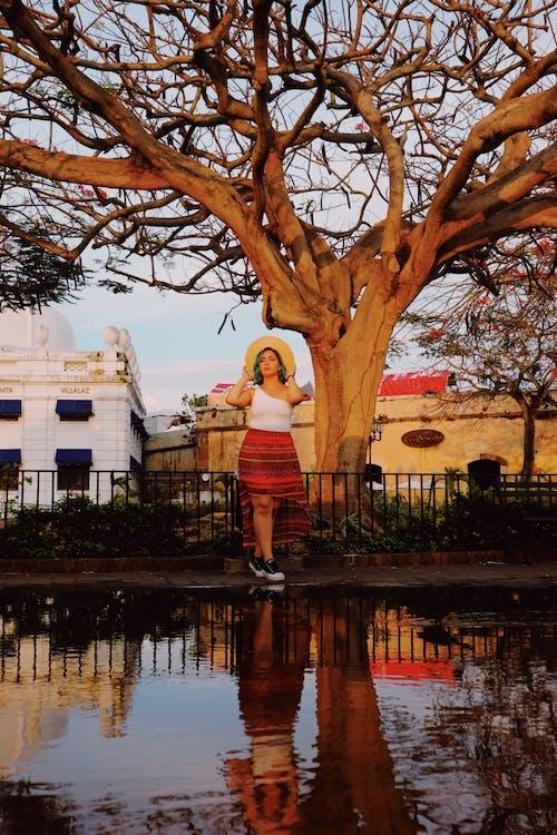 Foto d'estoc gratuïta de a l'aire lliure, aigua, arbre, arquitectura