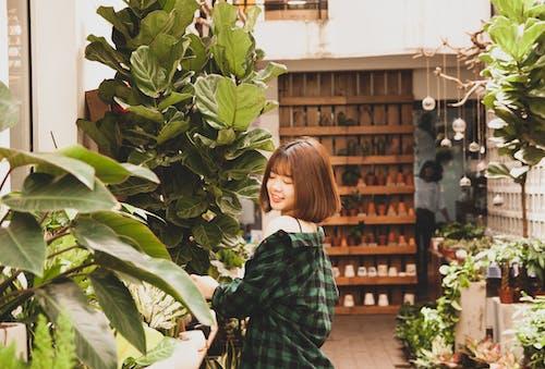 Foto d'estoc gratuïta de arbustos, asiàtica, atractiu, bonic