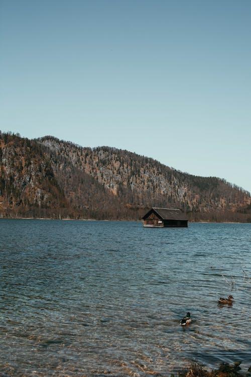 ビーチ, レクリエーション, 反射, 屋外の無料の写真素材