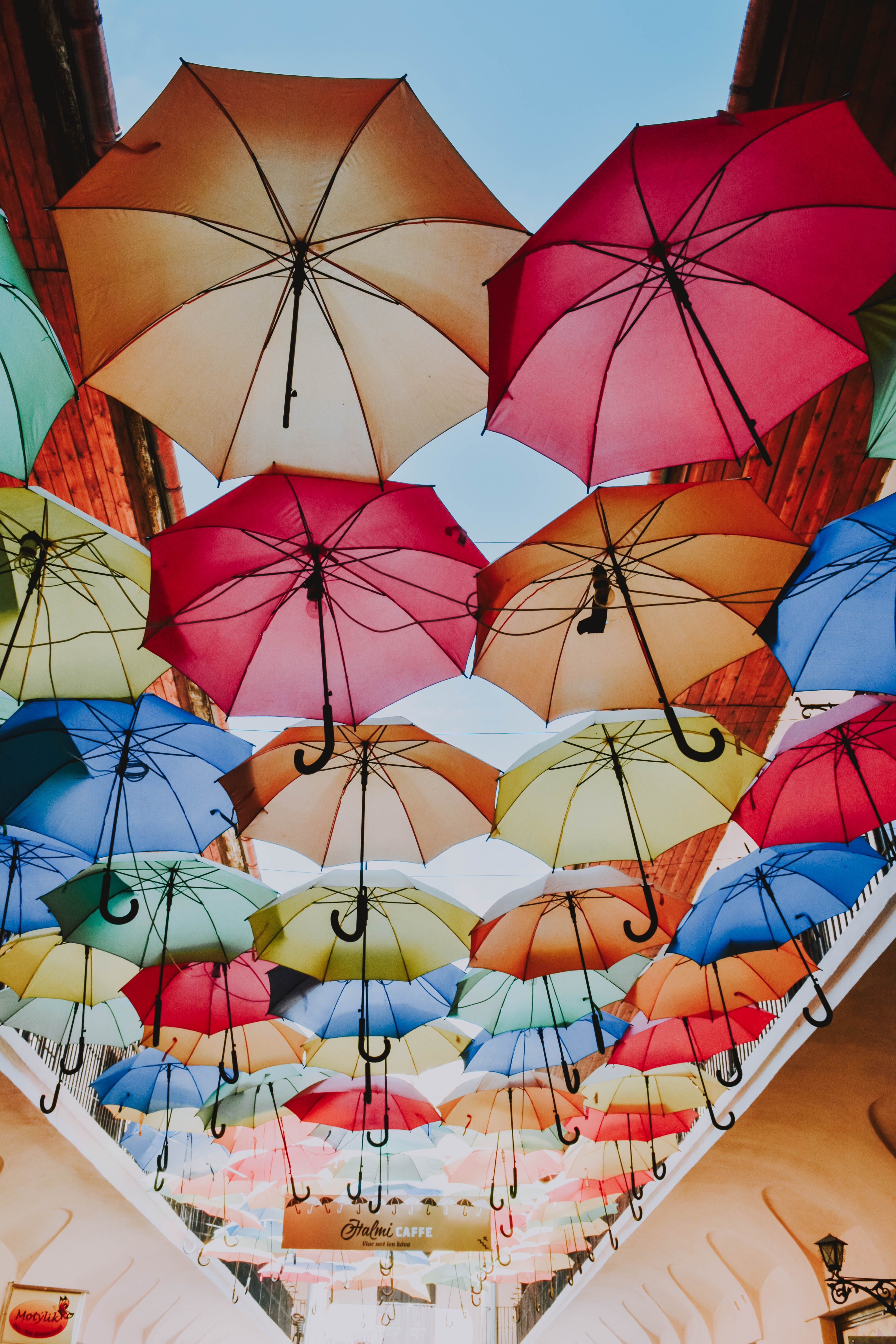 Low Angle View Of Assorted Coloured Umbrellas