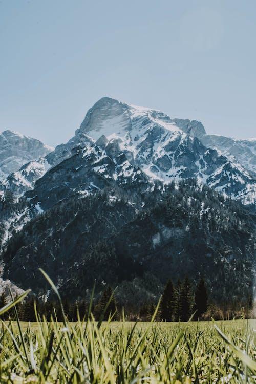 Kostnadsfri bild av berg, gräs, landskap, miljö