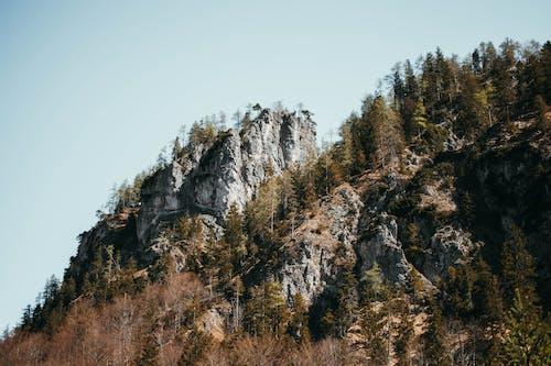 山, 日光, 木, 絶景の無料の写真素材