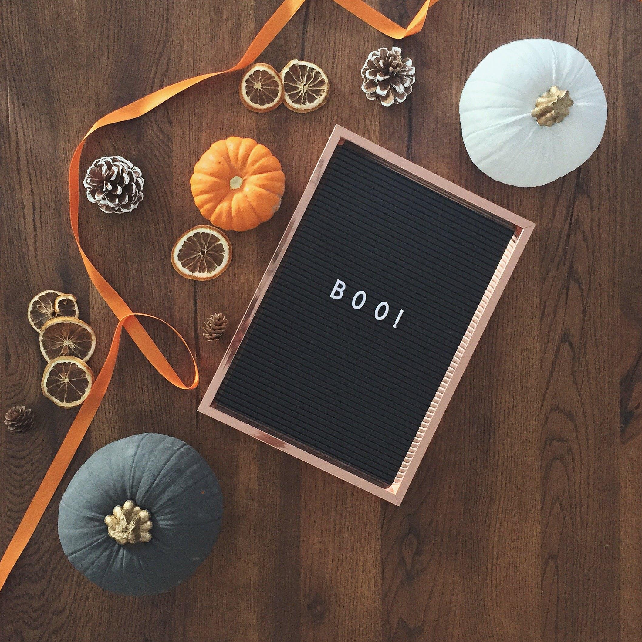 Základová fotografie zdarma na téma borové šišky, butternut squash, dekorace, design