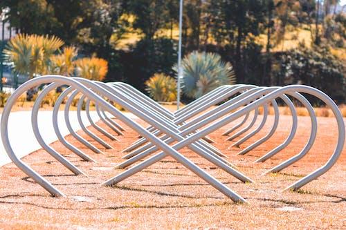 Darmowe zdjęcie z galerii z linia, miasto, park, zielony kolor