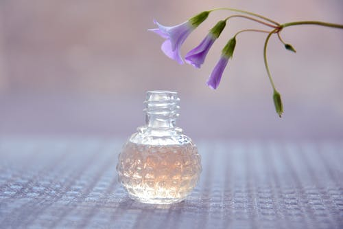 Purple Flower in Clear Glass Vase